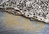 Termite Track On Wooden Floor