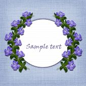 Periwinkle Flowers Line And A Circle