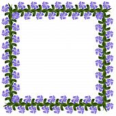 Periwinkle Flowers Square