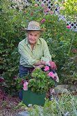 Gardening Wisdom