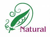 Natural food emblem or label