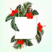 Square card with palm leaves