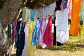 Brightly Colored Clothes