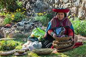 CUZCO, PERU - JULY 15, 2013: woman with natural dyes in the peruvian Andes