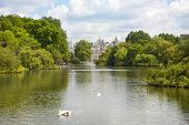 LONDON, UK - MAY 14, 2014  - St James park, nature island in the middle of busy London,  City of Wes
