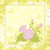 picture of ipomoea  - Ipomoea flowers and butterfly silhouettes on yellow and green background - JPG