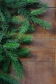 Brunch Of Christmas Tree On Wooden Background