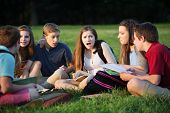 image of insults  - Insulted young female student with friends studying outdoors - JPG
