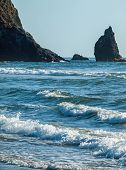 Detail Of Haystack Rock At Cannon Beach Oregon Usa
