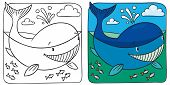 pic of fascinating  - Coloring picture of funny little whale in the sea - JPG
