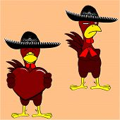 mexican chicken mariachi set2