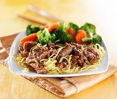 beef and noodles japanese teriyaki dish