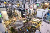 TOKYO - JANUARY 10, 2013: Cityscape view over the Shibuya crosswalk. Shibuya is a famed fashion center and nightlife area.