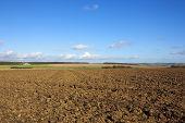 Plowed Fields In Autumn