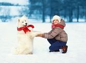 stock photo of christmas dog  - Christmas winter and people concept  - JPG