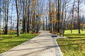 Alley Runs Through The City Park In Zakopane