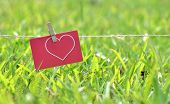 pic of clotheslines  - Card hanging on the clothesline - JPG
