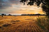 stock photo of farm landscape  - Beautiful Summer sunset over field of hay bales in countryside landscape - JPG