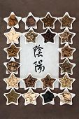 stock photo of chinese calligraphy  - Chinese herbal medicine selection with yin and yang symbols in calligraphy script on rice paper - JPG