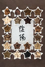image of yin  - Chinese herbal medicine selection with yin and yang symbols in calligraphy script on rice paper - JPG