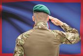 stock photo of guam  - Soldier in hat facing national flag series  - JPG