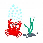 foto of creatures  - Cute red crab with water bubbles and seaweeds vector illustration Tropical sea life theme illustration Cartoon sea creatures Sea plants and animals vector graphic - JPG