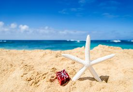 stock photo of starfish  - Starfish with gift box on the sandy beach in Hawaii Kauai - JPG