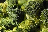 Nahaufnahme von Broccoli 2