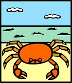 crab in the bach