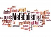 Metabolism, Word Cloud Concept poster