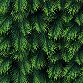 Fir Tree Branches Pattern. Christmas Background With Green Pine Branching. Happy New Year Vector Dec poster
