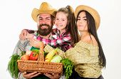 Family Gardeners Basket Harvest Isolated White Background. Family Gardening. Parents And Daughter Fa poster