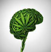 Cannabis Brain And Marijuana Neurological Effect On Thinking As A Human Organ Made Of Weed Leaves As poster