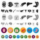 Internal Organs Of A Human Flat Icons In Set Collection For Design. Anatomy And Medicine Vector Symb poster