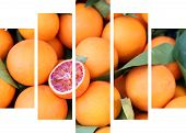 Blood Oranges Collage At Seperate Frames - Canvas Collage - Sanguine Orange poster
