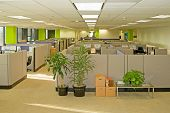 image of business-office  - Corporate office settings showing desks - JPG