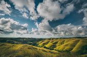 Green meadow, cloudy sky. Landscape. Sumba island. Amazing scene the stunning meadows covered with t poster