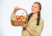 Woman Cheerful Carry Basket With Natural Fruits. Woman Gardener Rustic Style Hold Basket With Apples poster