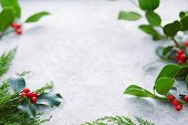 Christmas decorations, holly leaves with red berries. European Holly (Ilex aquifolium) leaves and fr poster