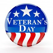Veterans day button poster