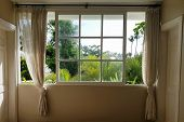 Window / View From Window / Window With Curtains poster