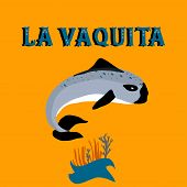 Vaquita Marina Known As Cochito Blue Whale Sealife Vector Illustration poster