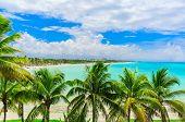 Varadero, Cuba, Stunning Gorgeous Inviting View From Tropical Garden On Cuban Varadero Beach, Tranqu poster