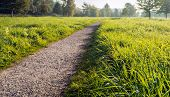 Atmospheric Image Of A Seemingly Endless Path In A Dutch Park. Next To The Path Is Long Fresh Green  poster