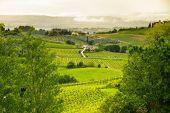 Tuscany landscape near San Gimignano, Italy