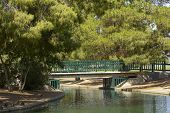 picture of cortez  - Pedestrian bridge at Cortez lake Summer in Phoenix Arizona - JPG