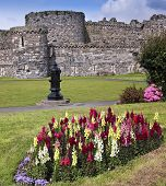 A Flowery Beaumaris Castle On Anglesey, Wales
