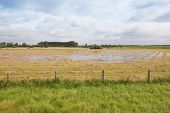 Flooded Hay Field