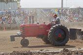 Massey Harris Tractor Pulling