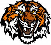 Tiger Head Snarling Graphic Mascot